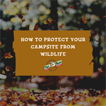 How to Protect Your Campsite from Wildlife