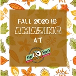 Fall 2020 is Amazing at Jellystone Park!