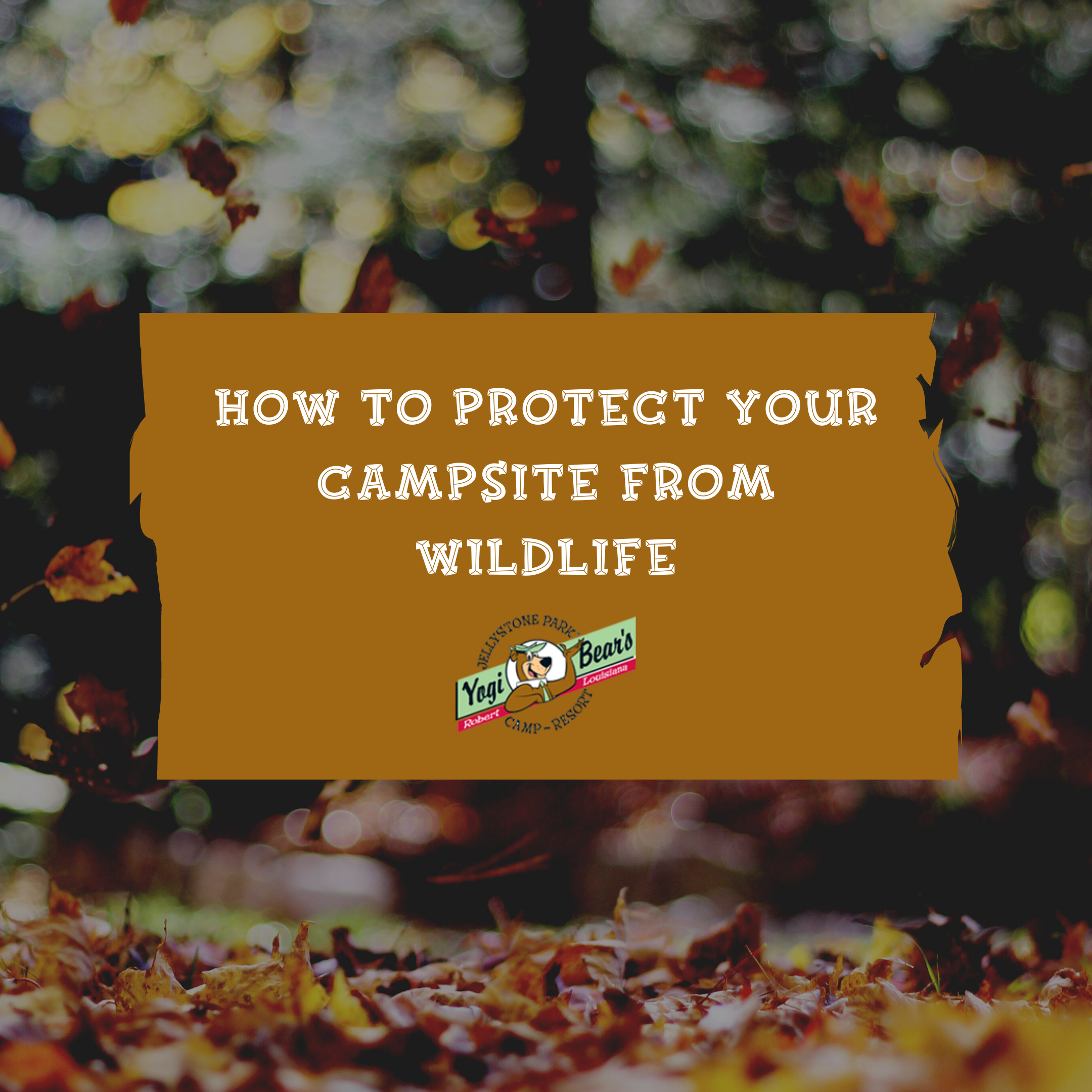 "a sign with yogi bear on it titled ""how to protect your campsite from wildlife"""