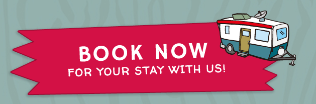 Book Now for your stay at Jellystone graphic